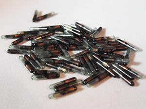 AVID Microchips are available in different sizes and frequencies